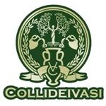 Società Agricola Colli dei Vasi - Tolentino(MC)